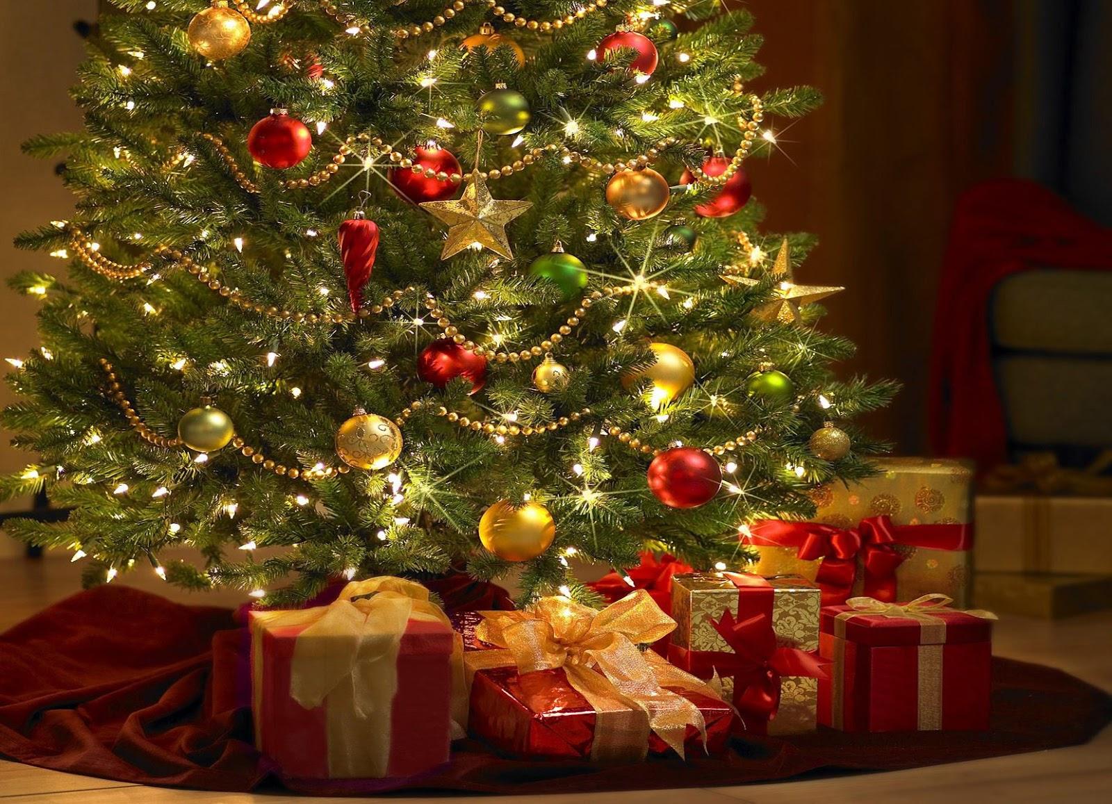 descubre nuestros menús de grupo para navidad y eventos carpaccio